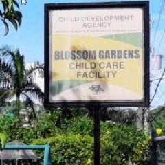 Donate to Blossom Gardens Children's Home in Jamaica