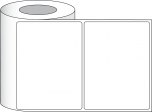 "8"" x 6"" Premium Gloss Paper, 450/roll, 3"" core"