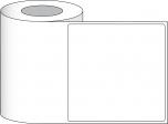 "8"" x 8"" Premium Gloss Paper, 300/roll, 3"" core"