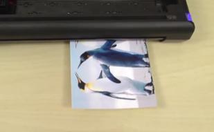 Trio Tech Support: Printing Borderless Photos